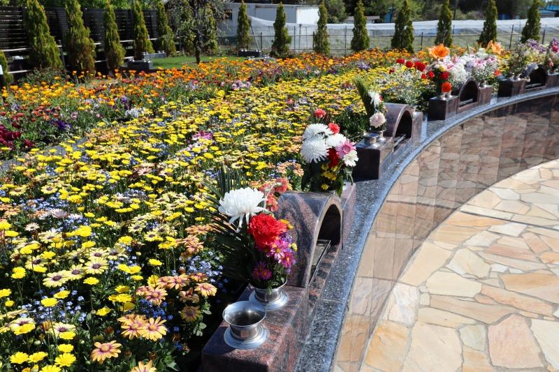 サニープレイス松戸 花の区の画像
