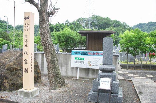宝善院桜霊園_3