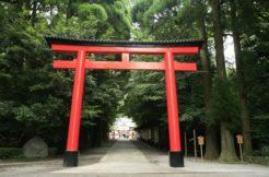 神道のお墓を建てるには?永代供養・祭祀や墓地の場所