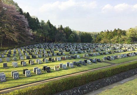 都立八王子霊園の画像トップ
