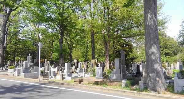 都立 雑司ヶ谷霊園の画像トップ