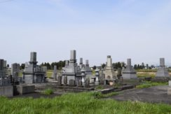 善得寺 宮保墓地の画像1