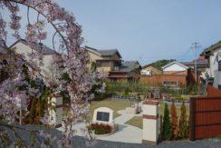 地蔵寺 樹木葬「桜雲」の画像1