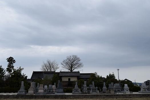 法泉寺 となみ野霊園_0