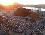成田山瑞泉寺霊苑の画像2