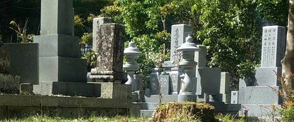 コラム無縁墓の画像2
