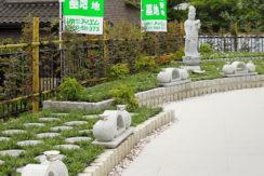 松戸大橋樹木葬墓地の画像1