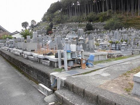 興国禅寺墓地_0
