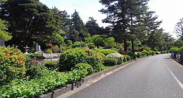 公園墓地のイメージ1