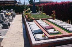 プレート型のお墓とは?新しいデザインの墓石とプレート葬