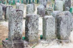 複数のお墓を1つにまとめるには?具体的な方法とポイント