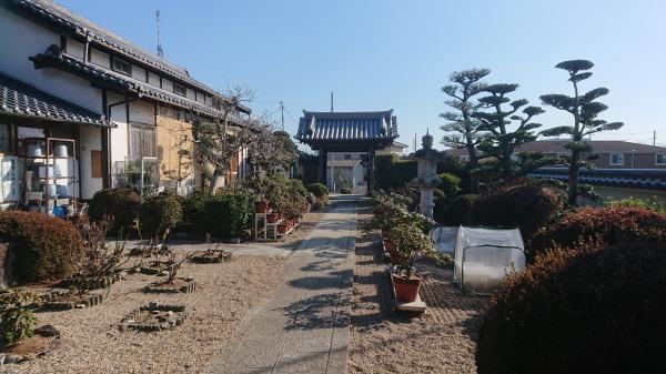 善福寺の画像6