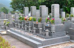 浄土真宗のお墓はどう建てる?お墓の特徴とお参りの仕方