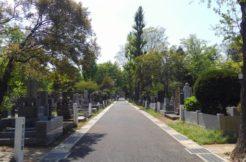 公営墓地とは?費用やメリットデメリットを徹底解説!