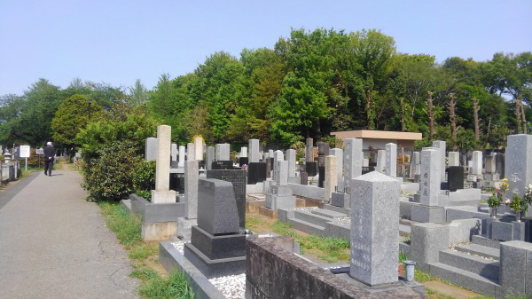 公営墓地に永代供養墓はある?納骨堂・樹木葬・合祀墓