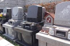 墓石に彫刻する文字や模様は自由!色や言葉の具体例も紹介