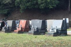 洋型墓石が大人気!形や彫刻などのデザインと費用を解説