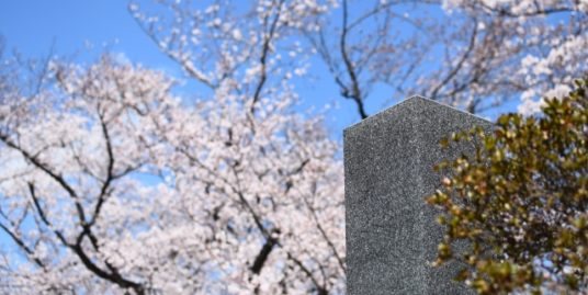 墓開きのイメージ1