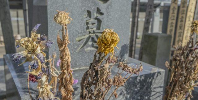 お墓の相続のイメージ1