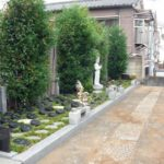 豊島染井樹木葬墓地レポートの画像