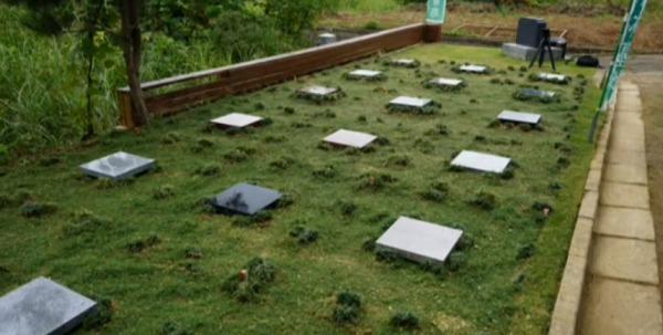 花見山 奥の院 樹木葬の杜_1