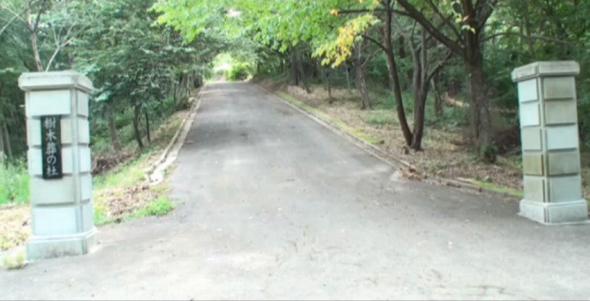 花見山 奥の院 樹木葬の杜_4