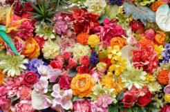 墓石にお花のイラストを彫刻するなら?デザイン例とポイント