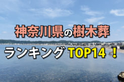 神奈川県の樹木葬人気ランキングTOP15!お墓の費用・資料請求