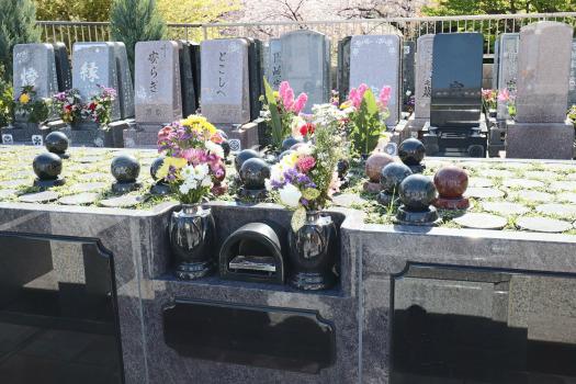 東京都北区の墓地・霊園人気ランキングTOP10!お墓の費用・資料請求