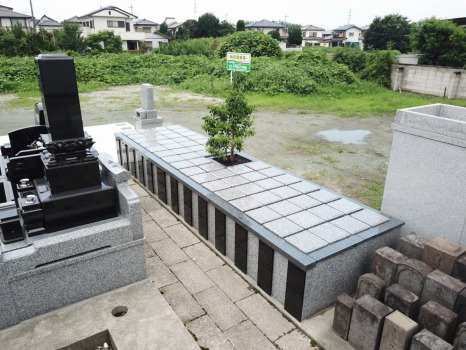 前橋東樹木葬_0