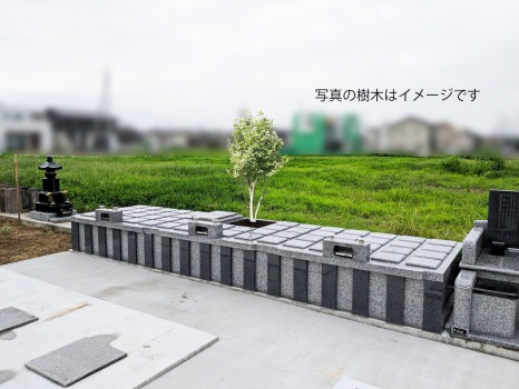 桜山樹木葬_0