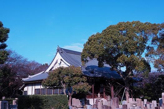 大寶寺 のうこつぼ_2