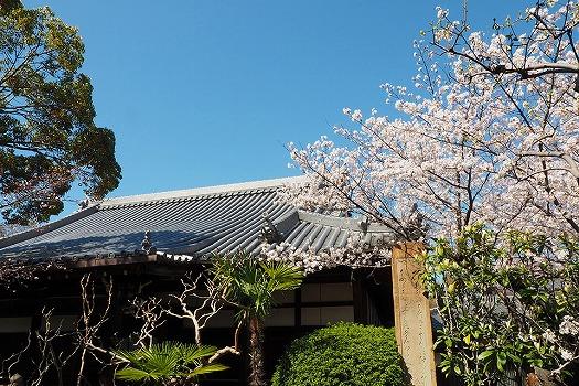 大寶寺 のうこつぼ_3