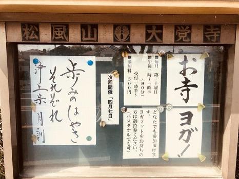 大覚寺 のうこつぼ_9