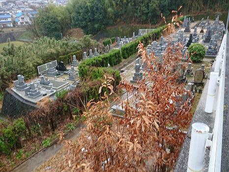 岡の鼻墓苑_9
