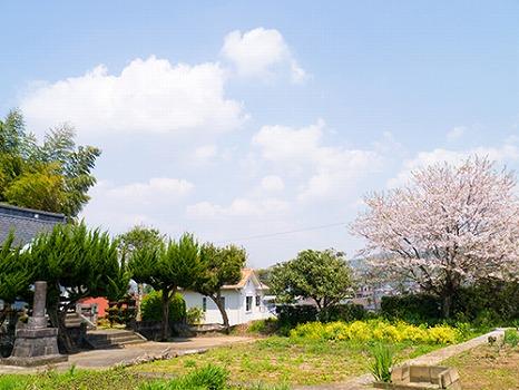 金井寺 のうこつぼ_4