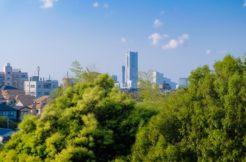 横浜市南区の墓地・霊園人気ランキングTOP5!お墓の費用・資料請求