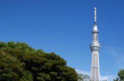 東京都墨田区の永代供養墓人気ランキングTOP5!お墓の費用・資料請求