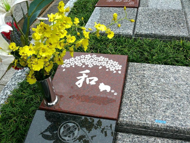 古川浄苑ガーデンレポ11