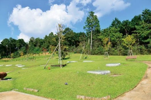 エンディングセンター桜葬墓地(高槻市)桜の丘