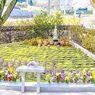 親王山延命寺 永代供養墓・樹木葬自然葬墓地 合同墓