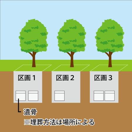 個別型樹木葬のイラスト