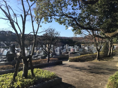 東京霊園_6
